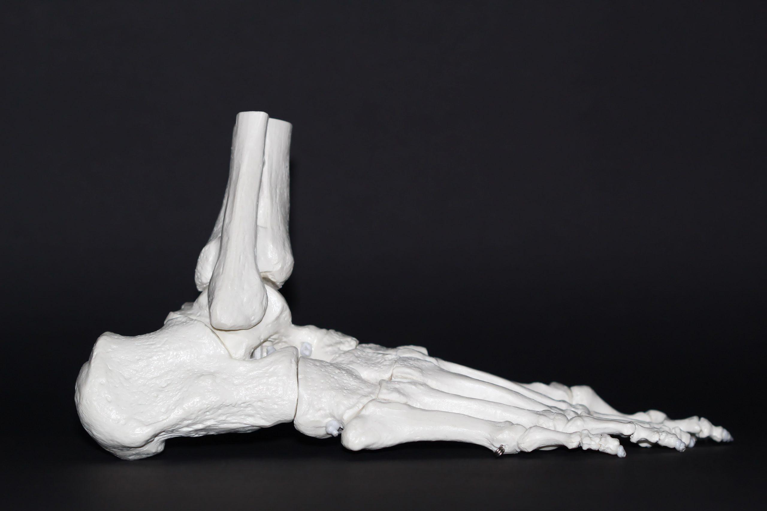 Calzado anatómico
