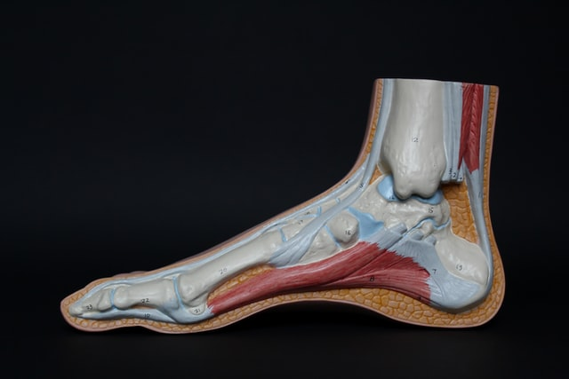 Ortopédico a medida