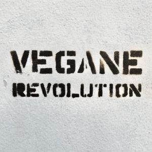 Zuecos Veganos para Mujer